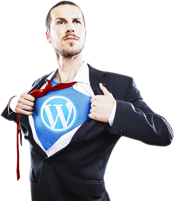 WordPress Security and Patching Home / WordPress Security and Patching